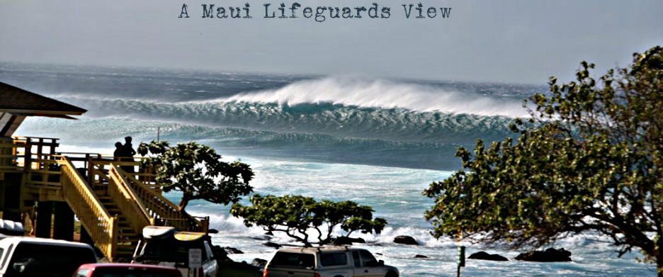 lifeguard-shack-big-wave.jpg